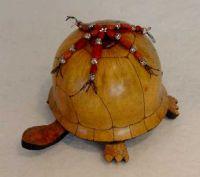 Three Toed Turtle